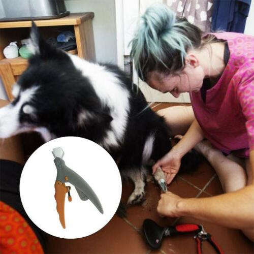 with Light Cat&Dog&Bird Pet